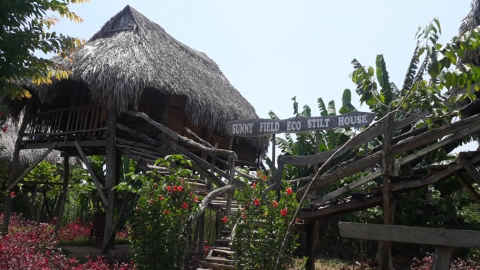 Lodge Sunny Field Eco Stilt House Cat Tien Vietnam
