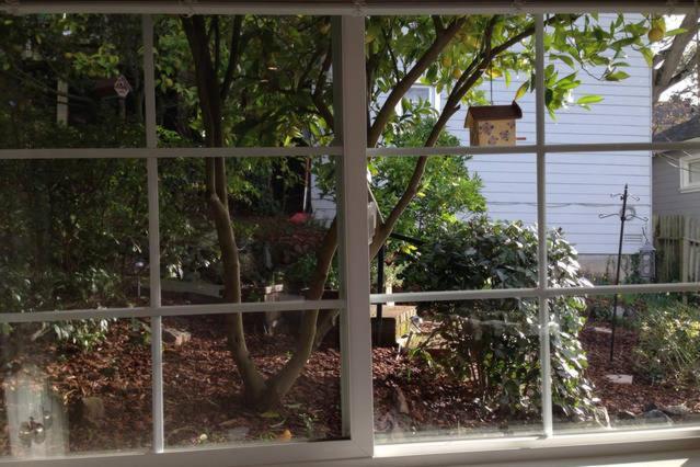 Garden Studio In Montclair Hills
