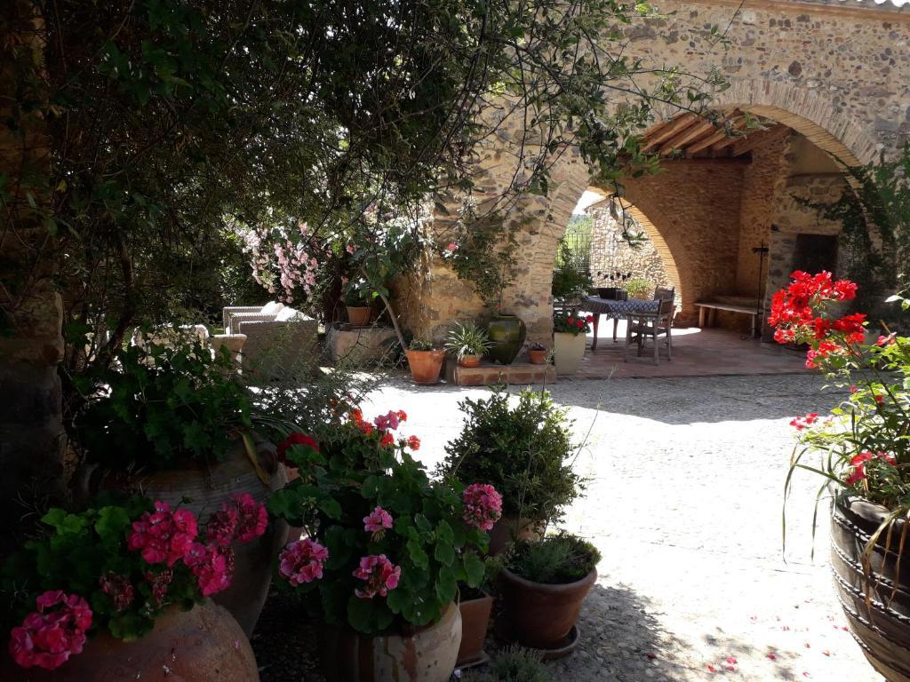 A garden outside Can Carbó de les Olives