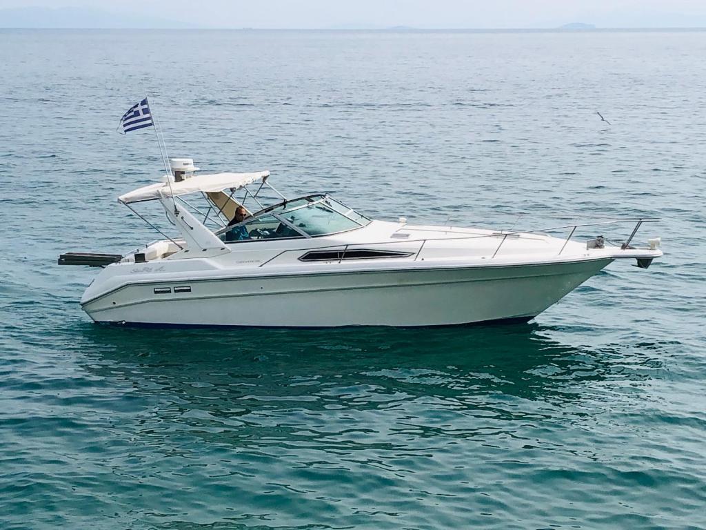 Boat Yacht Sea Ray Sundancer 370, Zakynthos, Greece