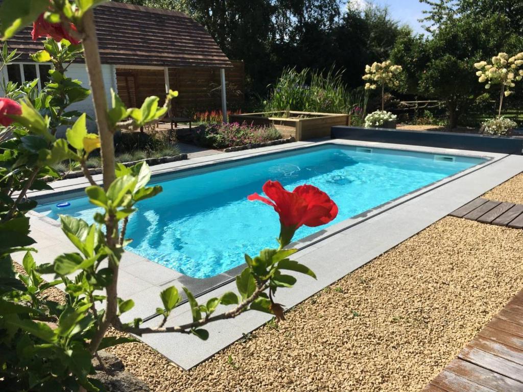 Piscines Es & Spas la chambre du chemin vert : spa piscine sauna, jodoigne