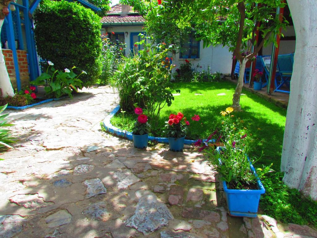 A garden outside Amazon Antique
