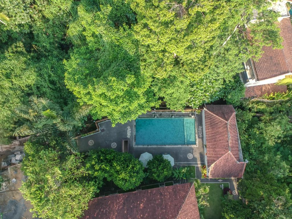 A view of the pool at Adi Jaya Cottages Jungle Suites by EPS or nearby