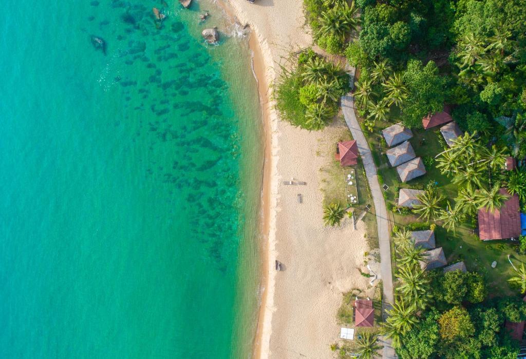 A bird's-eye view of 1511 Coconut Grove