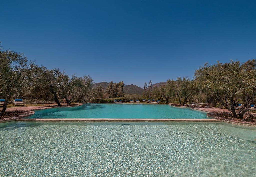 The swimming pool at or near L'Oliveraie de Marigha