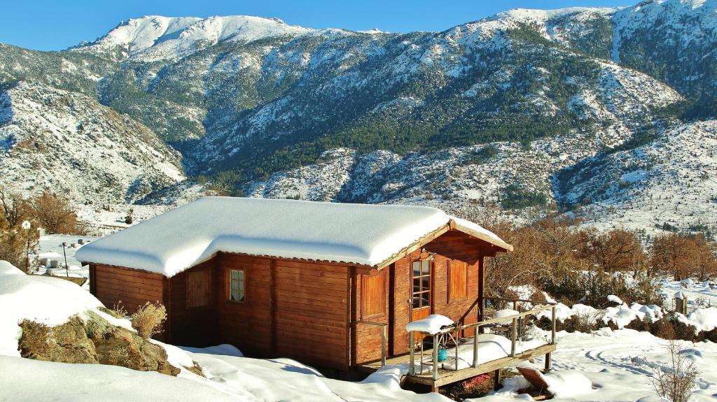 L'établissement Les Chalets De Lozzi en hiver