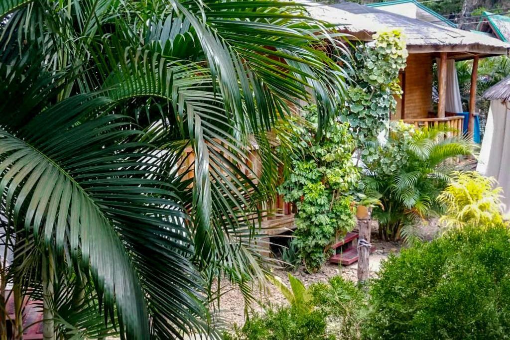 A garden outside Sei Nazioni Cottages