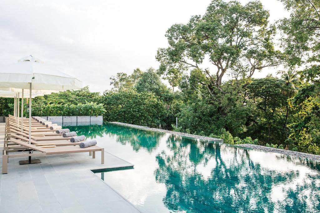 Treeline Urban Resort (Camboya Siem Riep) - Booking.com