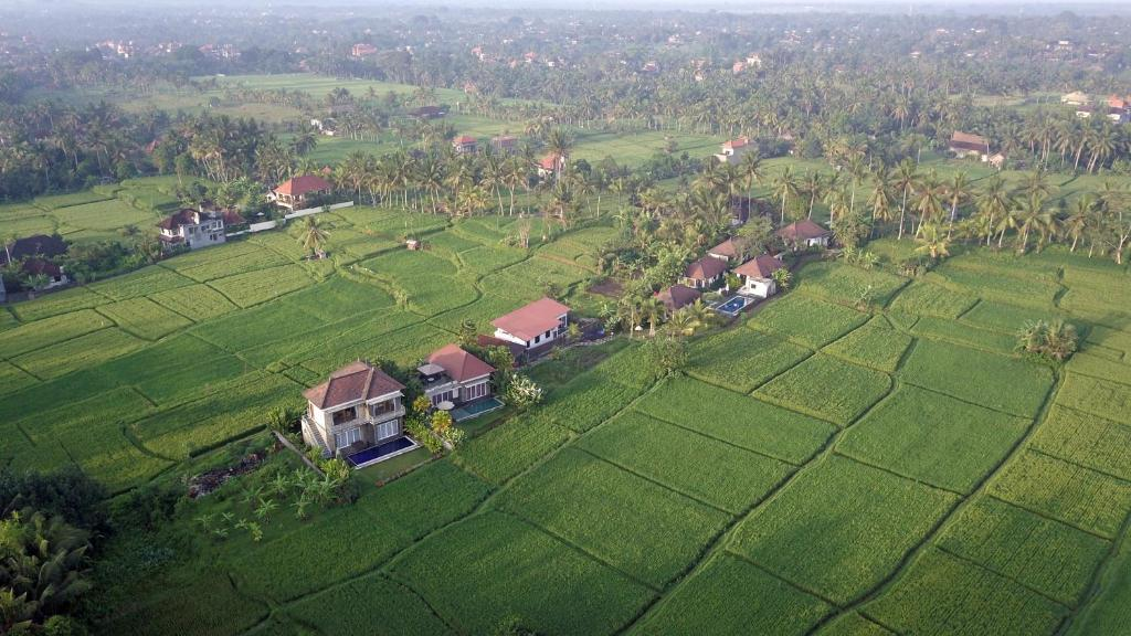 Vue panoramique sur l'établissement The Samara Villas & Restaurant