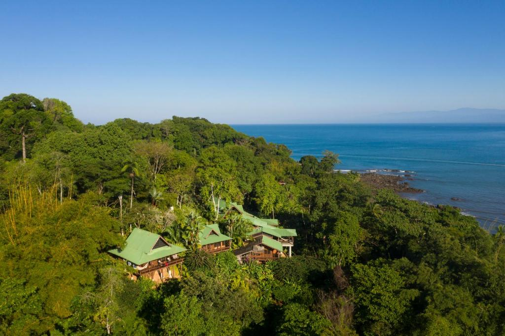 A bird's-eye view of Aguila de Osa Rainforest Lodge