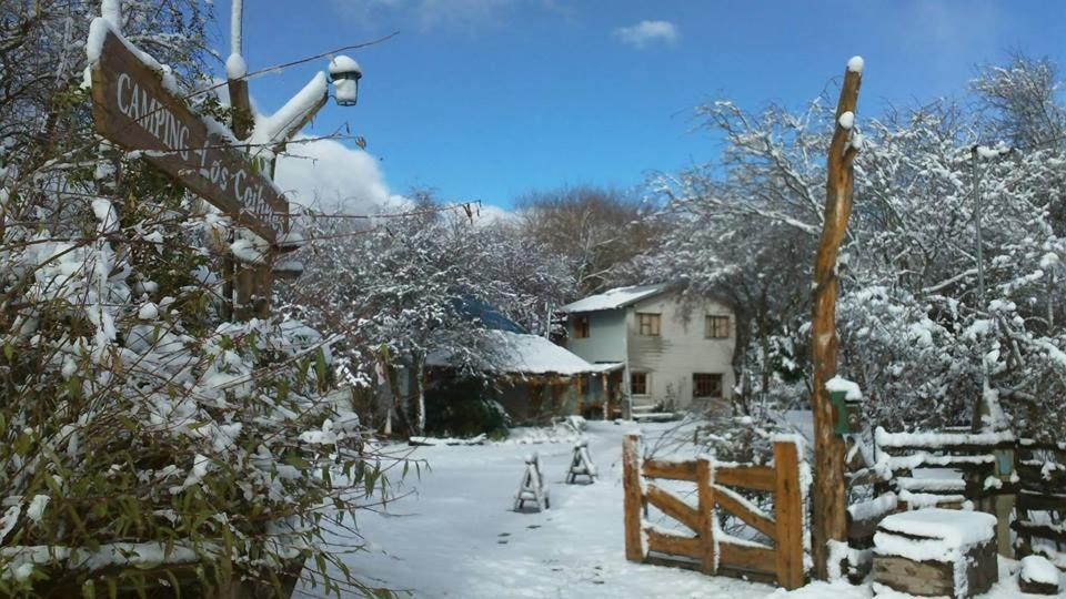 Hostel Los Coihues during the winter