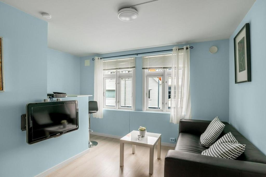 Norwegian Housing, Small Studio Apartments 18-32m2 ...