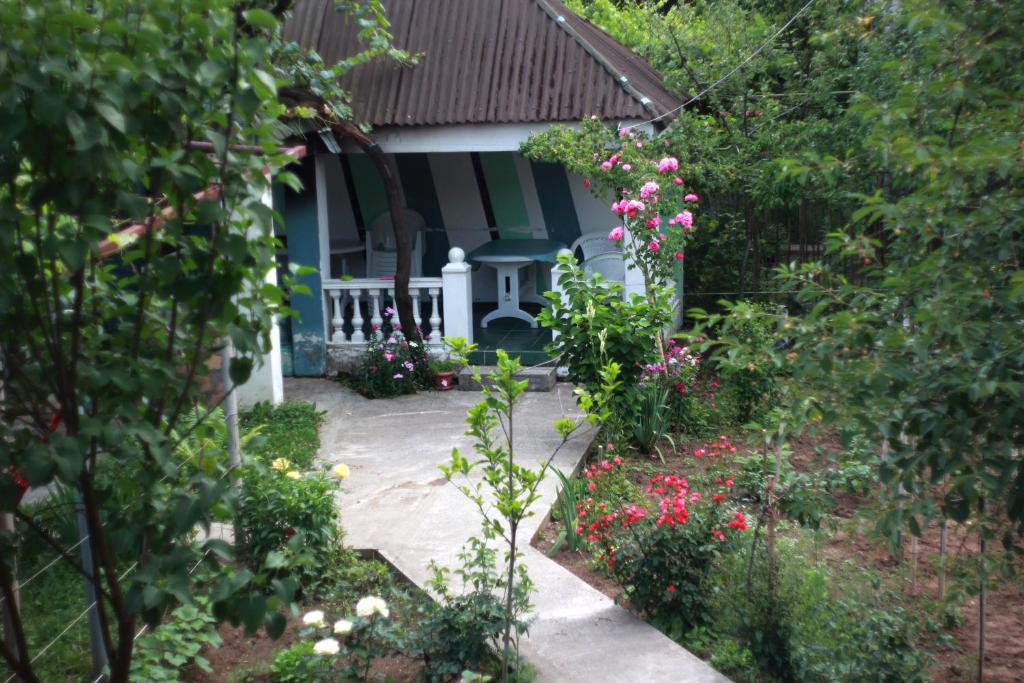 Guest House M&B