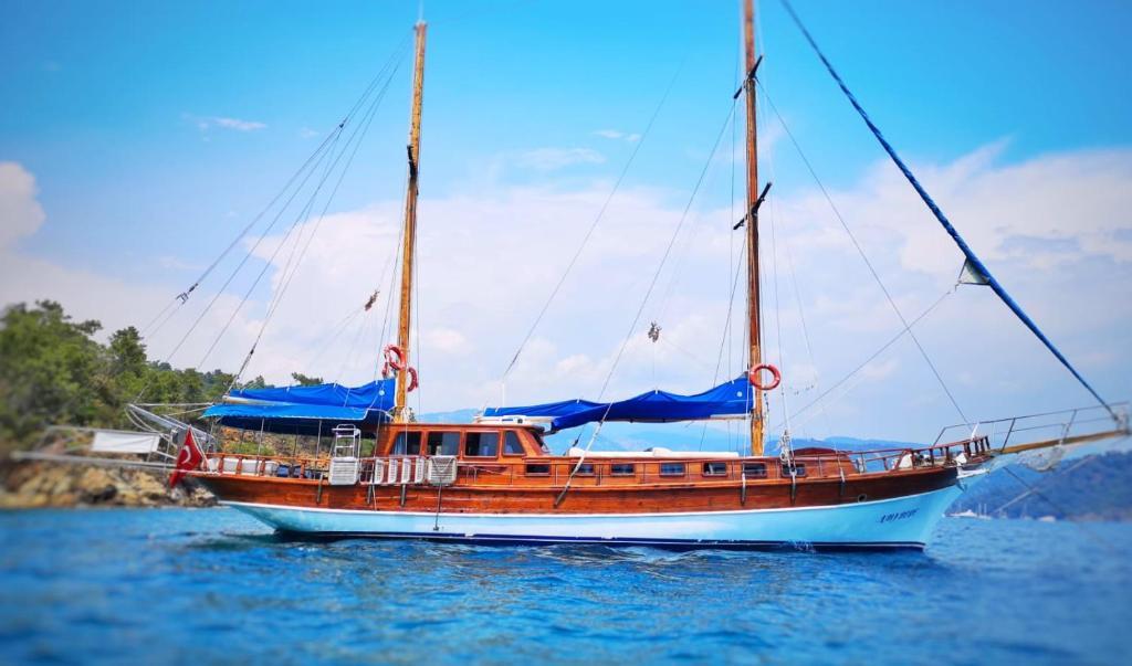 Hacer windsurf en el barco o alrededores