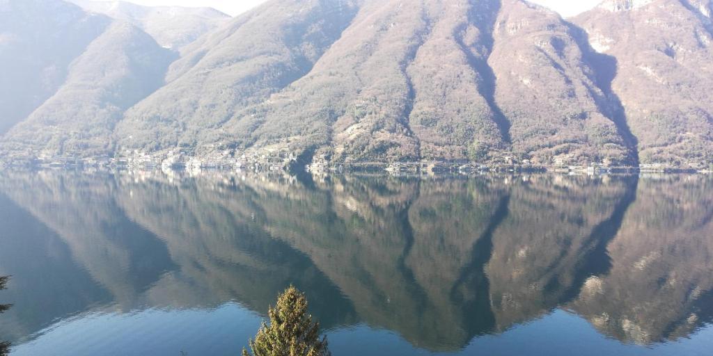 Giardino Sul Lago La Vigna Nesso Updated 2020 Prices