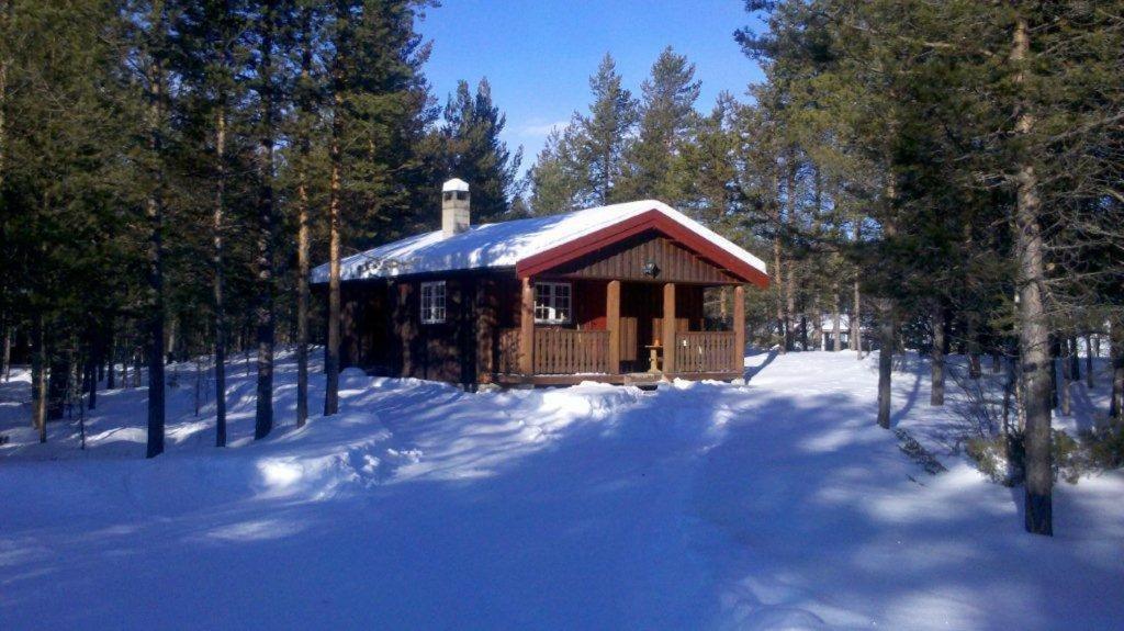 Ryen Hytteutleie - Cottages durante l'inverno
