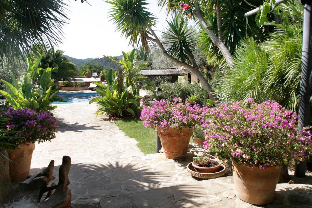 Hotel Rural Cas Pla 24