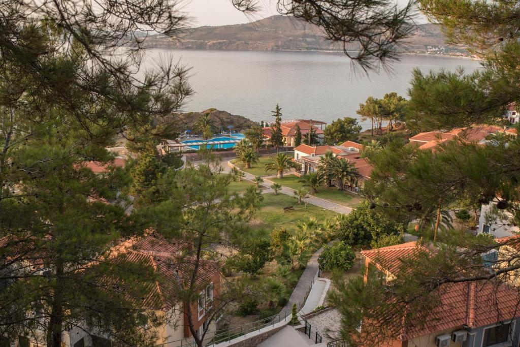 Uitzicht op het zwembad bij Alma Hotel of in de buurt