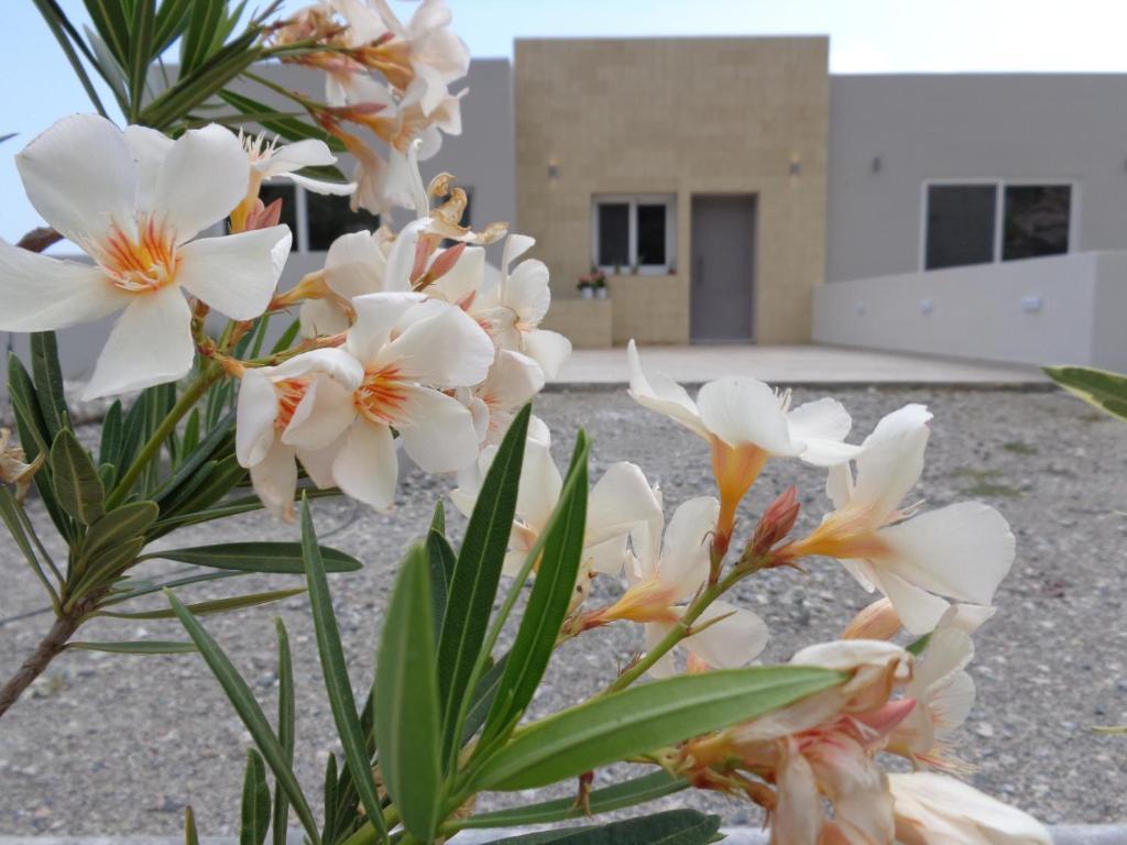 Tesoro Del Mare, Pefkos di Rodi – Prezzi aggiornati per il 2019
