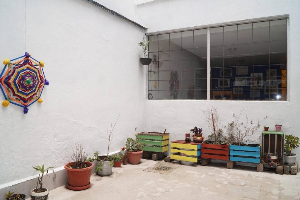 Art Residency Studio Con Terraza Mexico City Updated