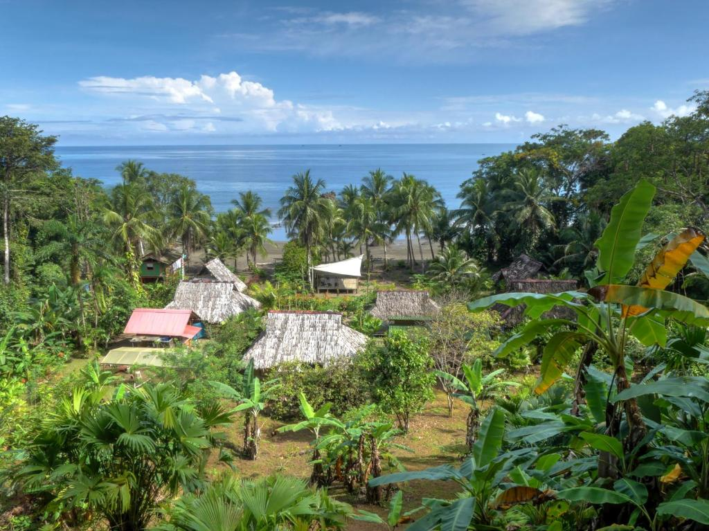 A bird's-eye view of Pijibá Lodge