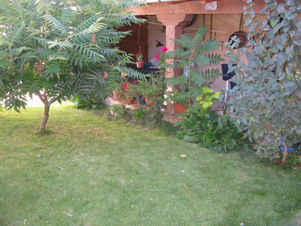 A garden outside Casa Rural Arturo I