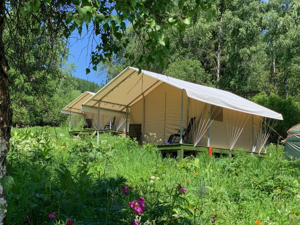 Здание of luxury tent