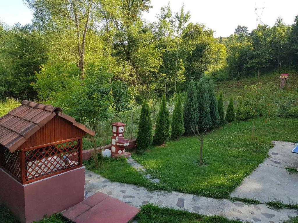 Yoyo Zurli Park Resiţa Prețuri Actualizate 2020