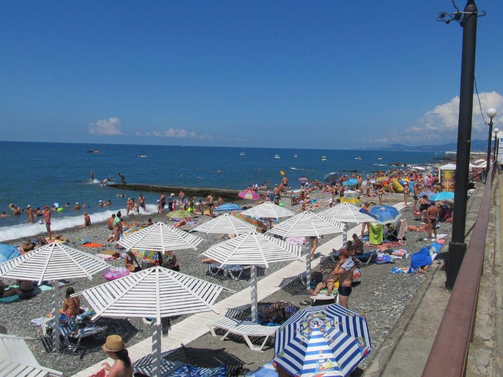 Городской пляж адлера фото