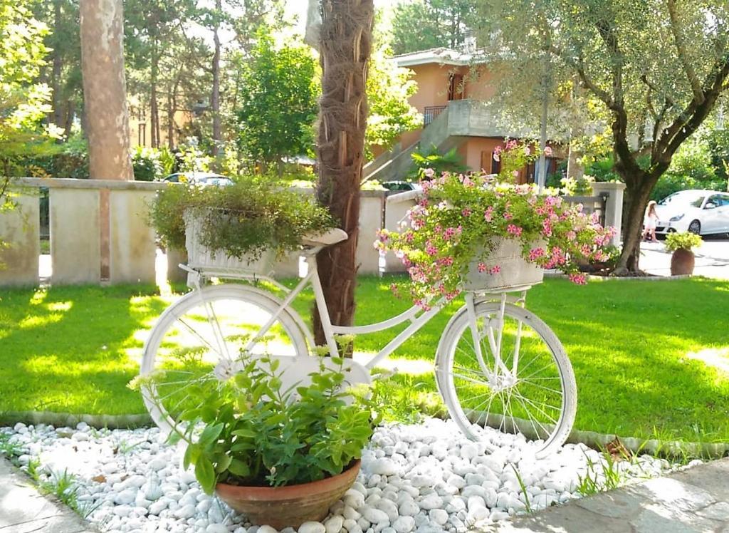 Zahrada ubytování Villa Lisy