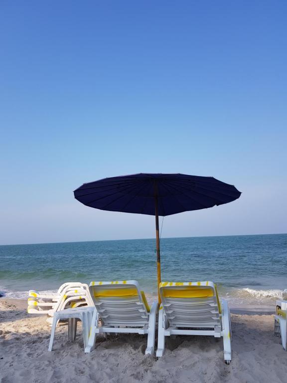 ชายหาดของเกสต์เฮาส์หรือชายหาดที่อยู่ใกล้ ๆ