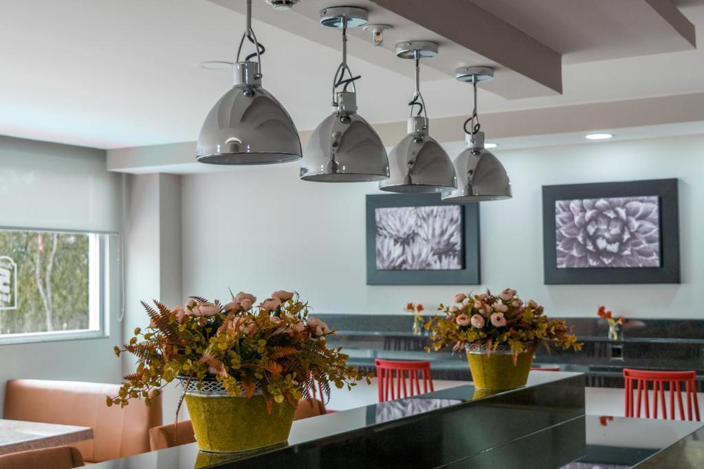 Hotel 5 Inn Plus, León – Precios actualizados 2019