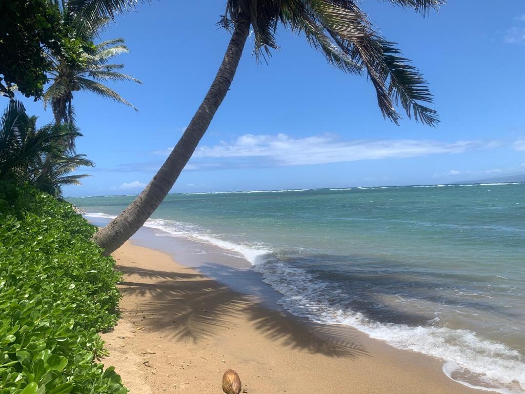 Molokai Beach Bungalow Ualapue Hi