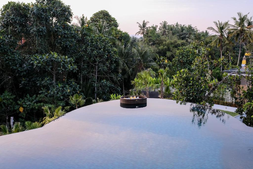 Het zwembad bij of vlak bij Tirta Arum