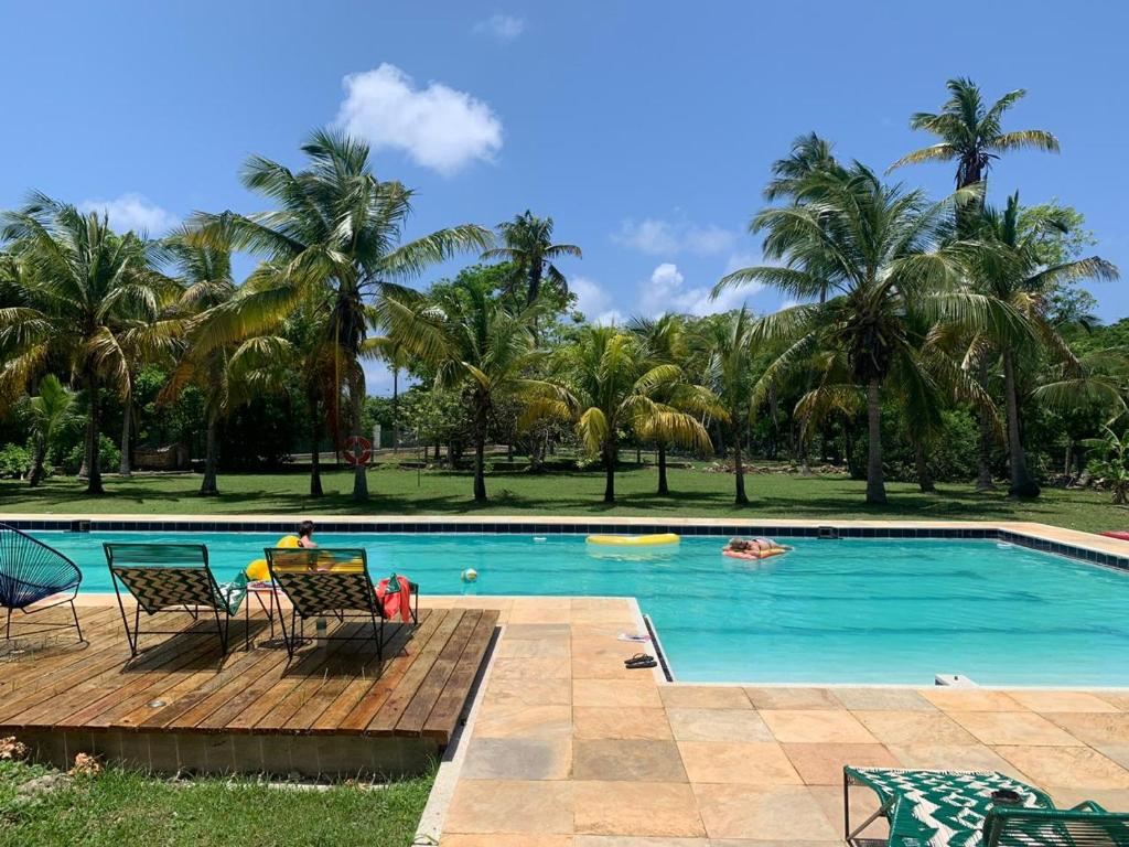The swimming pool at or near República Hostel San Andres