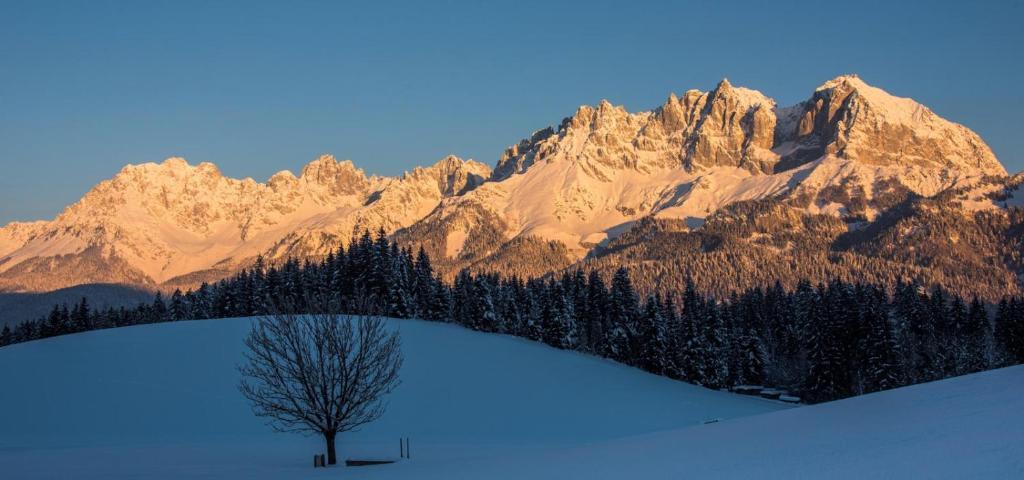 Hotel Sonne Sankt Johann In Tirol Paivitetyt Vuoden 2020 Hinnat