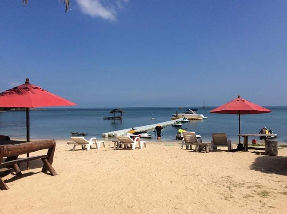 Ein Strand an oder in der Nähe des Hostels