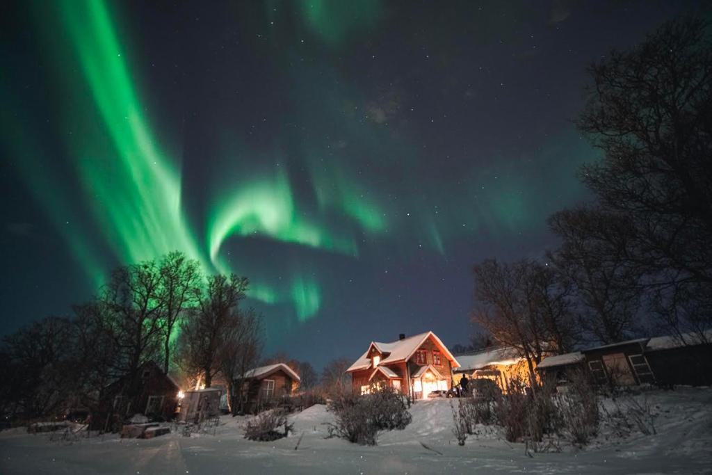 Home Stay Villa Strandheim Tromssa Paivitetyt Vuoden 2020 Hinnat