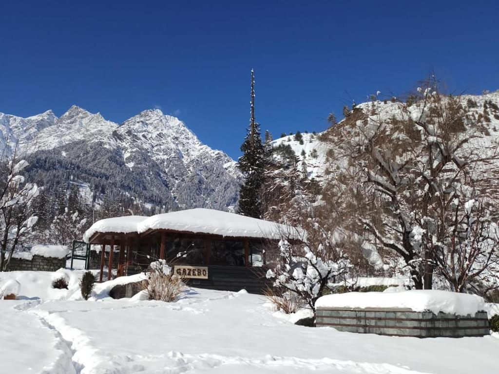 Image result for Solang Valley, Manali: