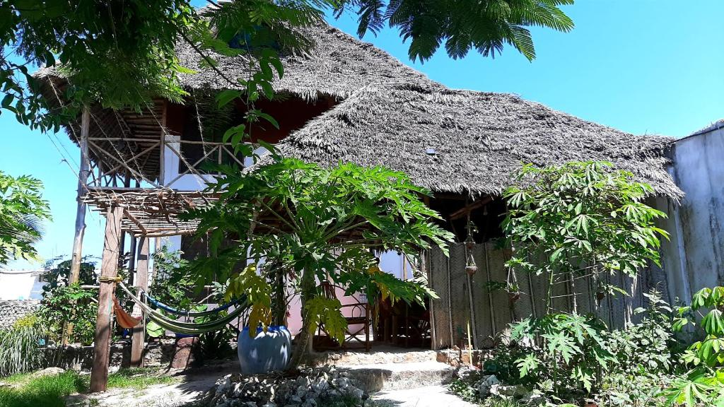 Bed And Breakfast Kilimani House Tanzania Nungwi Booking Com