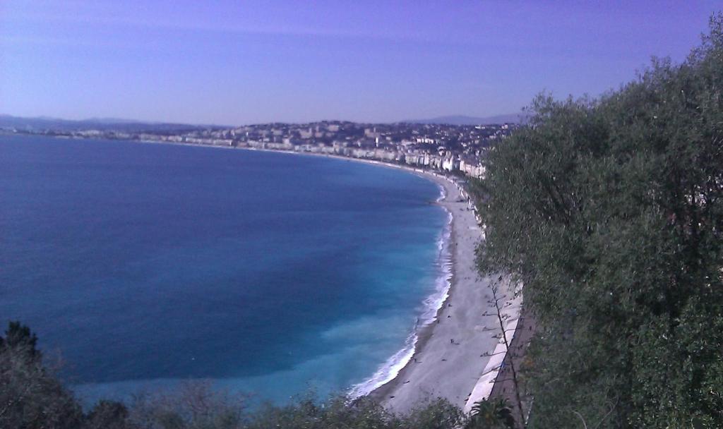 A bird's-eye view of Capitole Bleu