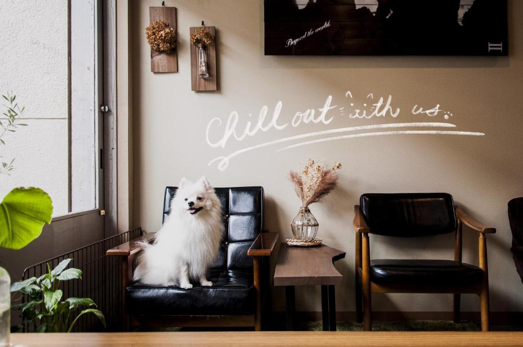 Pet or pets staying with guests at Suzuki Guesthouse