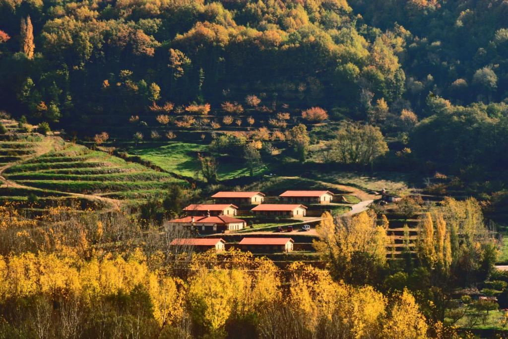 escapada al Valle del Jerte