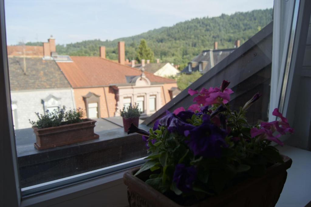 Schones Apartment Im Dg In Der Wiehre Germania Freiburg Im