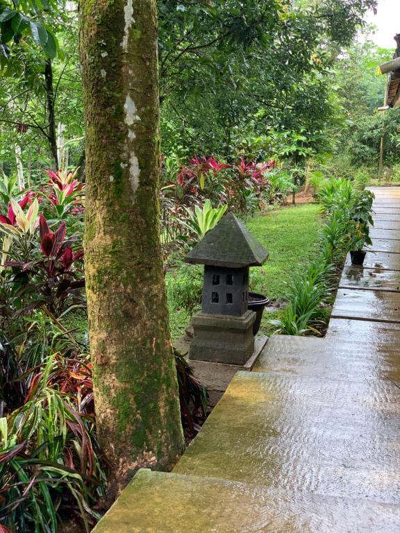 Kampoeng Wisata Rumah Joglo Bogor Indonesia Booking Com