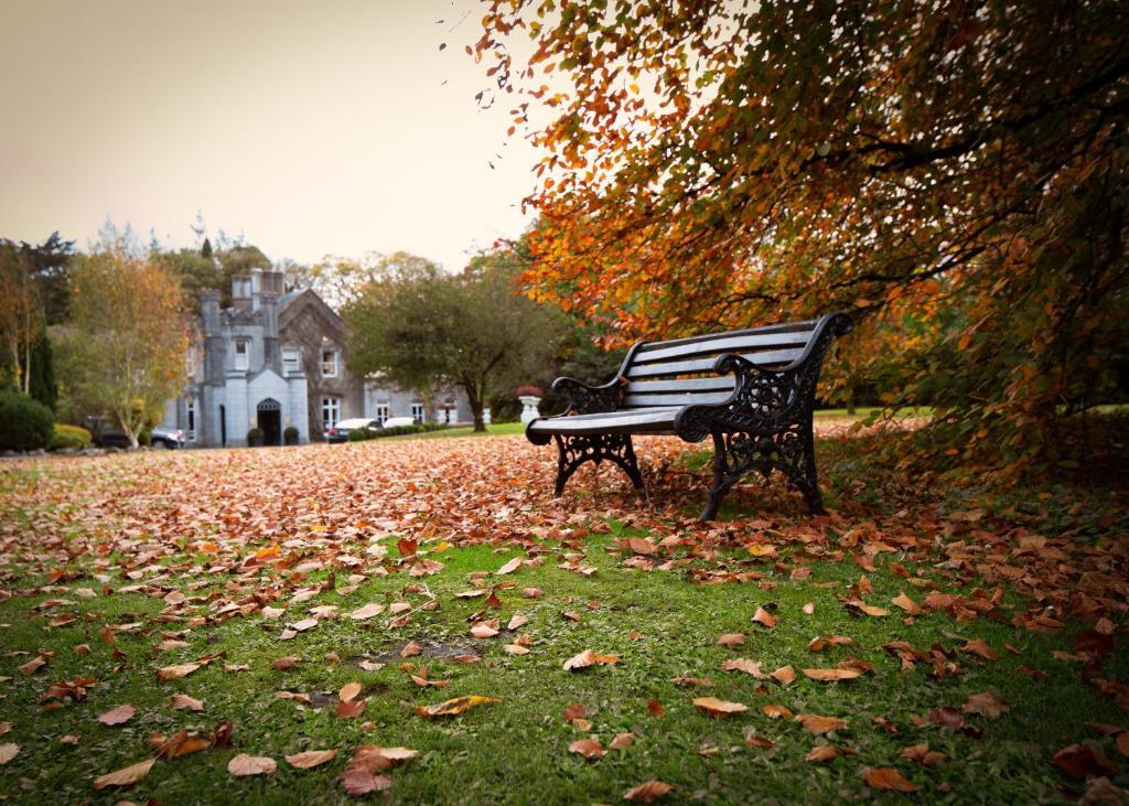 Roscommon Time and Date   Ireland   tonyshirley.co.uk