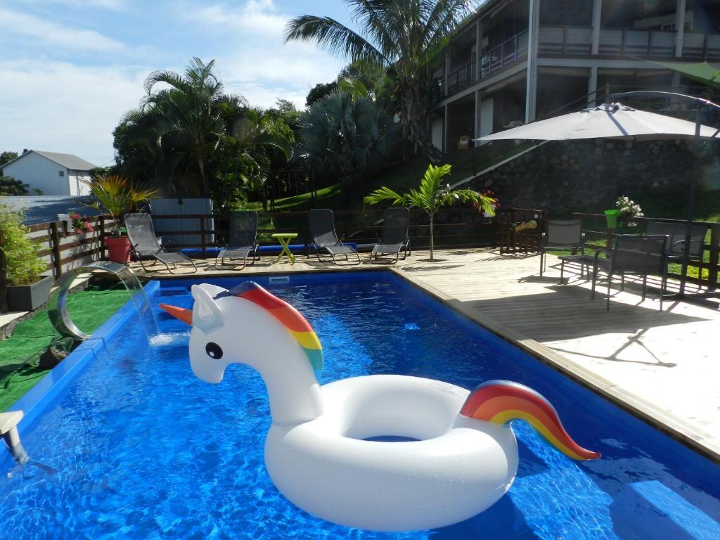 Piscine A Moins De 100 Euros t2 avec piscine et jacuzzi privés vue mer le bulbul, saint