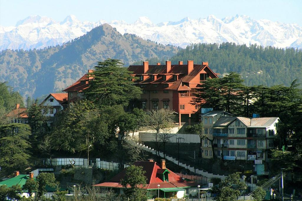 Mountain and Peace Homestay, Shimla, India - Booking.com