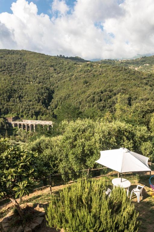 Azienda Agricola I Cirillo