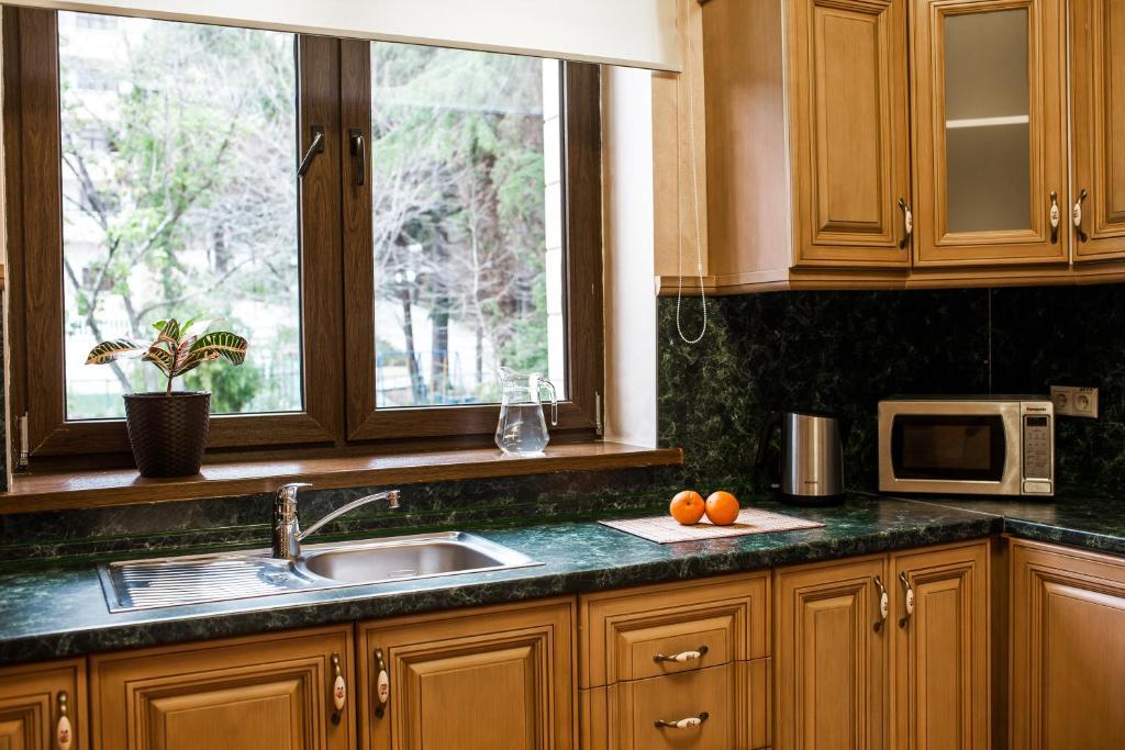 Кухня или мини-кухня в Санаторий Золотой Колос